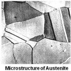 Microstructure of Austenite